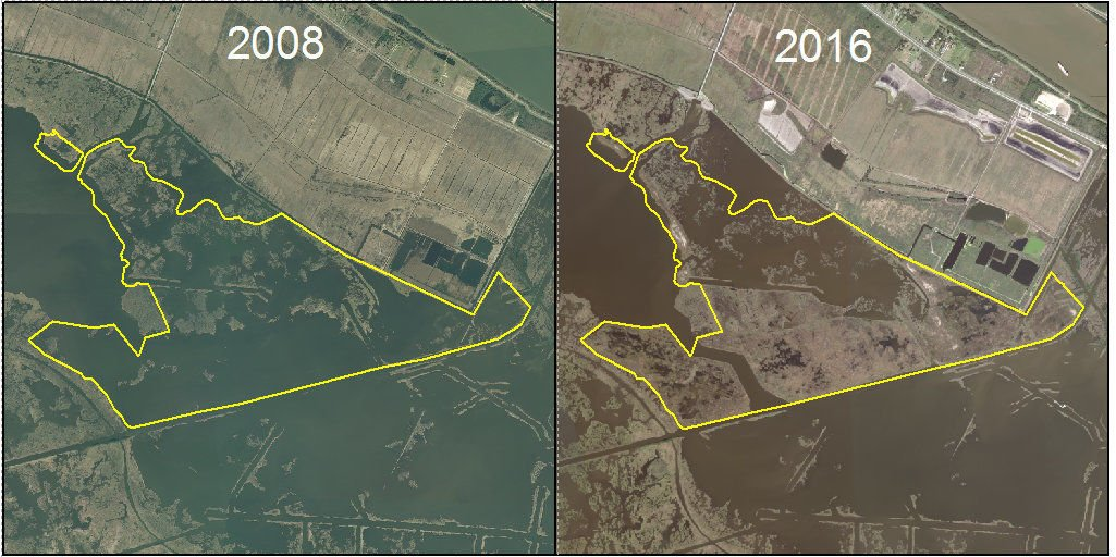 Louisiana land loss, while slowing, still a football field every 100 minutes