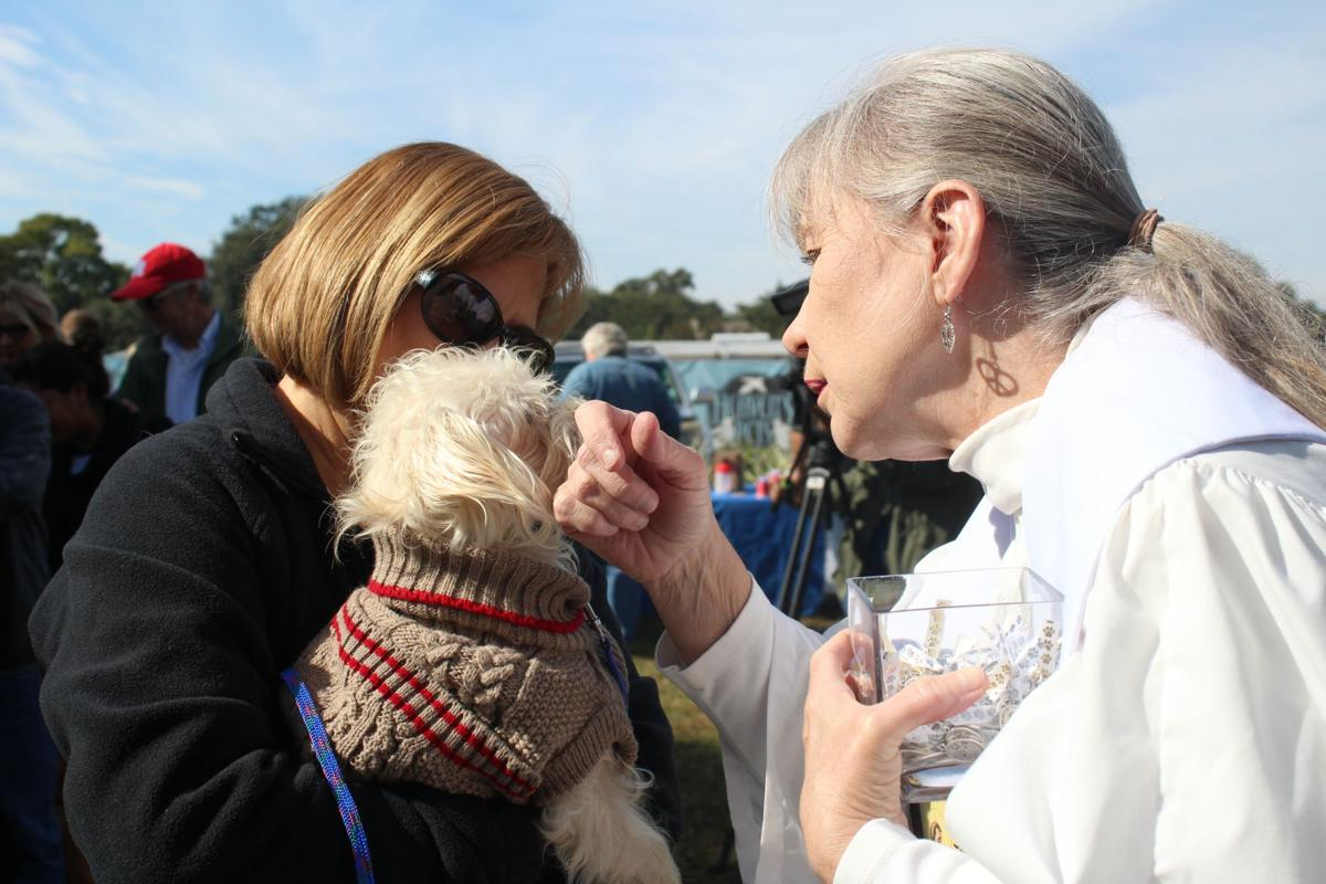 Blessing of the Pets Nov 19
