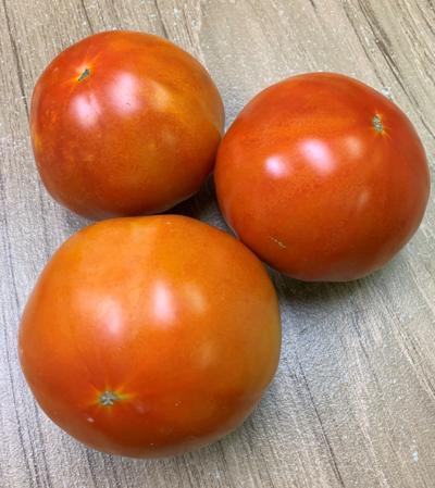 Ripe celebrity tomatoes