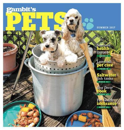 Gambit's Pets, summer 2017_lowres