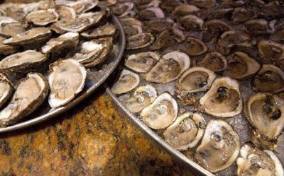 Could oyster beds have provided New York with some protection from Sandy?