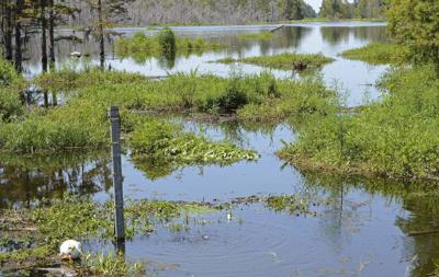 Federal judge approves $48.1 million Bayou Corne settlement _lowres