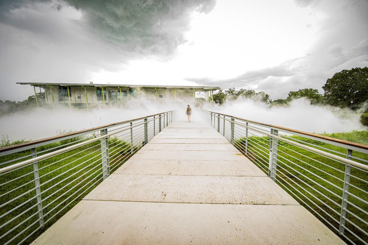 fog bridge_74_small.jpg