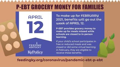 Pandemic EBT benefits for the month of February are going out this week!