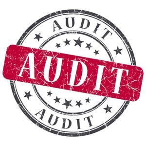State Audit