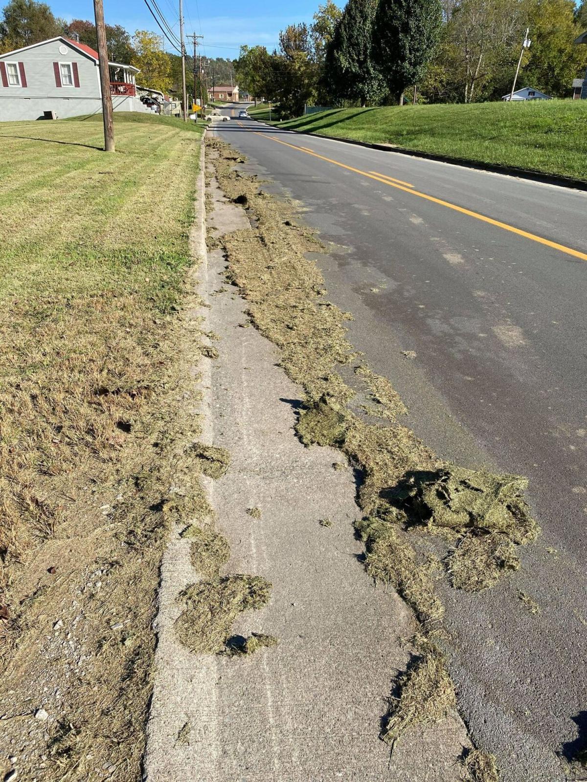 grassy danger1.jpg
