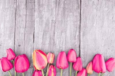 Frame of tulips on rustic wooden background. Spring flowers. Spring background. Valentine's Day and Mother's Day background. Top view