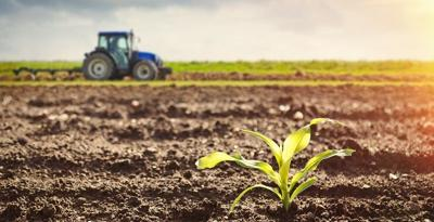 Grant opportunities available for Kentucky farmers, restaurants, research institutions