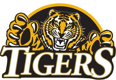 Tiger football players stand out in 4A stats
