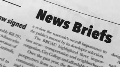 News Briefs Logo
