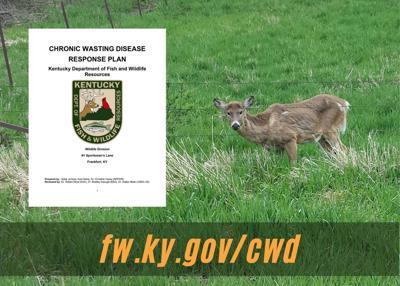 fw.ky.gov/cwd