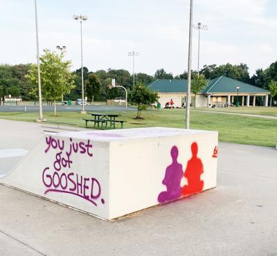 Skate Park Vandals