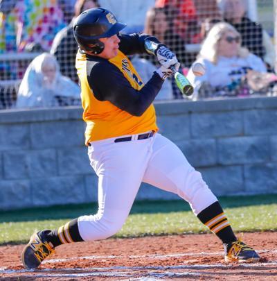 Region foes on tap for Tiger baseball