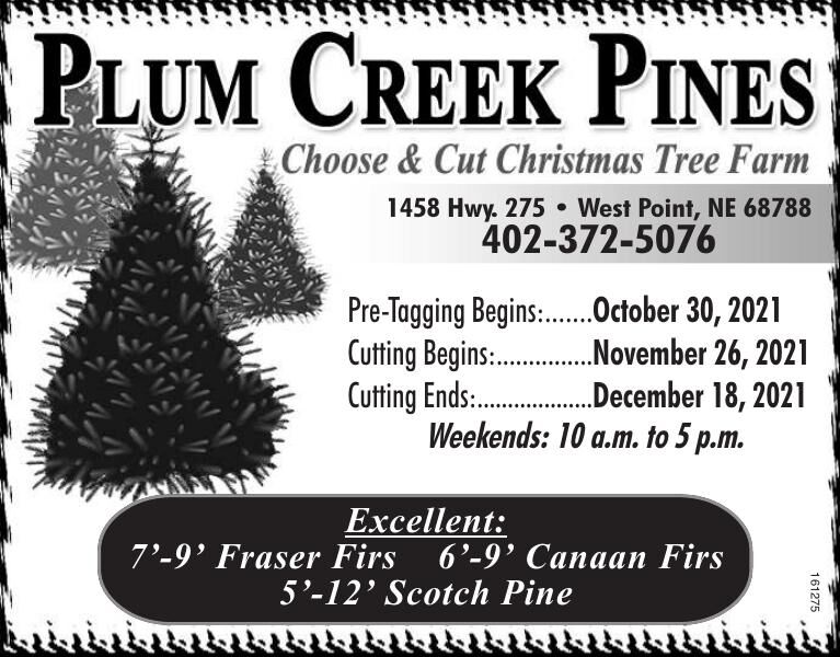 Plum Creek Pines