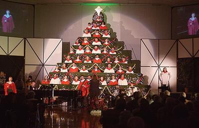 Christmas Tree concert