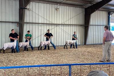 Rare opportunity fulfilled for Pierce County 4-H student