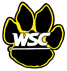 Wayne State softball swept in doubleheader by Sioux Falls