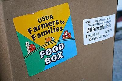 Food Box Future