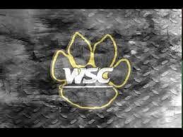 Wayne State lands 49 student athletes on 2020 NSIC Fall All-Academic Teams