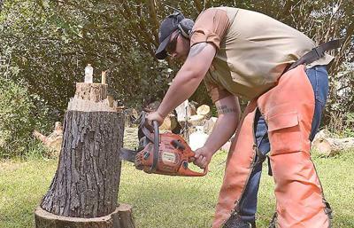 Norfolk man picks up chainsaw art as hobby news norfolkdailynews.com