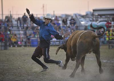 Cream of the crop' compete in Wayne County Fair bullriding | News