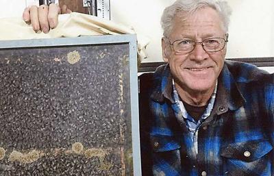 Beekeepers facing challenges