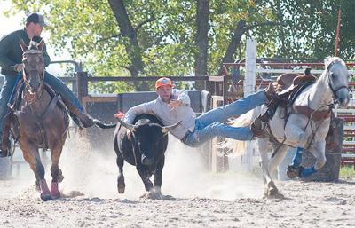 Northeast rodeo practice