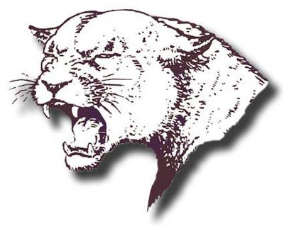 Norfolk High sports logo NDN