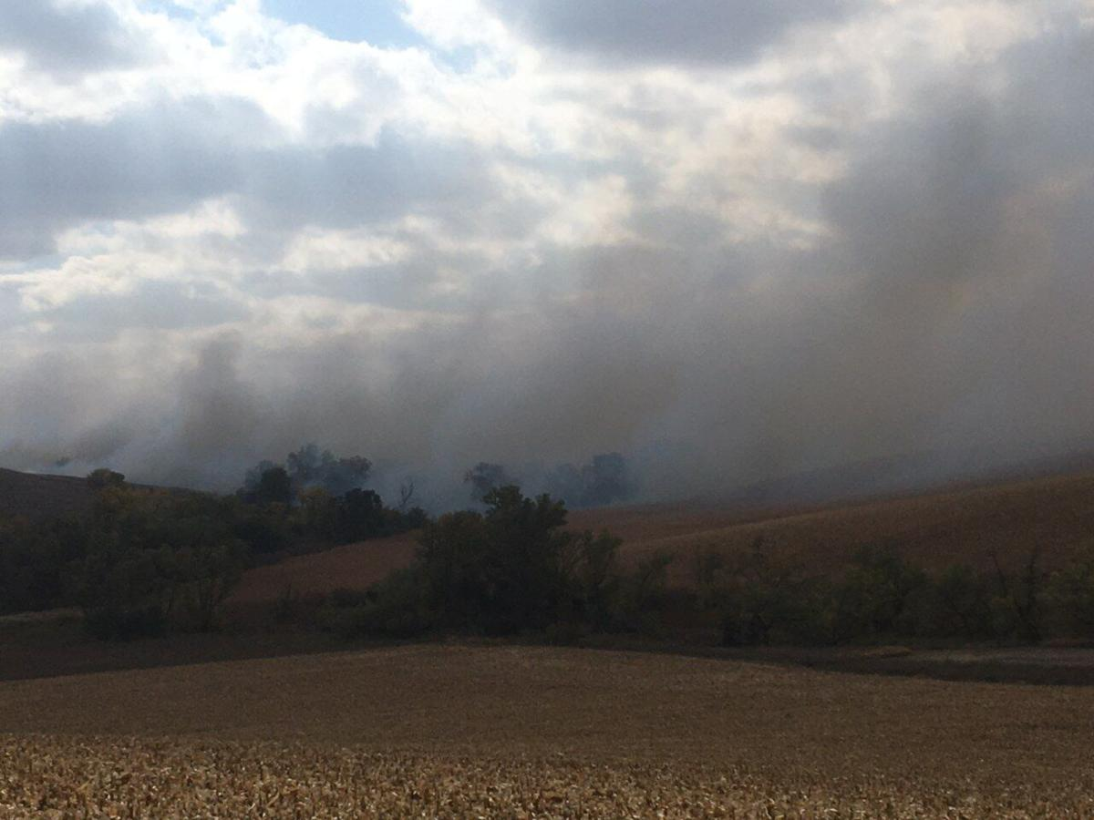 Grass and corn field fire