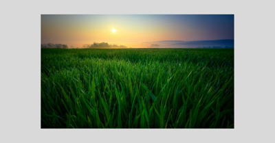 PA Farmland_Canva_Stock_2019.png