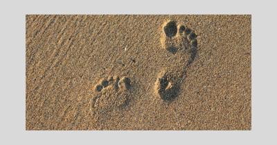 footsteps_2019.jpg
