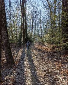 GreatOutdoors_hiking_thumb_2020.jpg