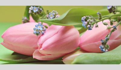 obit flowers new size.jpg
