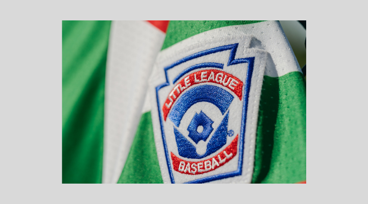 LLWS_sleeve_patch_2019.png