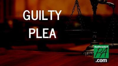 GuiltyPlea_Option3_NCPA_2020