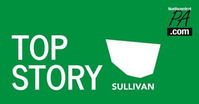 Top story Sullivan County graphic _2020