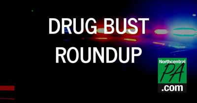 Drug Bust Roundup Graphic _ 2020