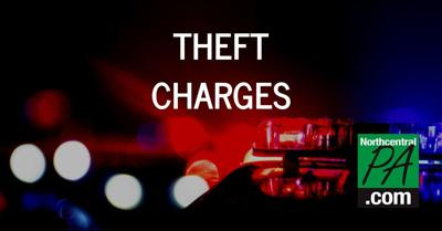 theft charges 2020