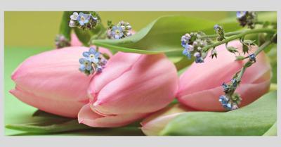 obit flowers 1.jpg