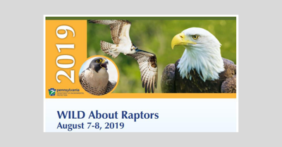 Wild_about_raptors_2019.jpg