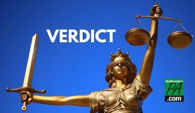 Verdict_NCPA2020