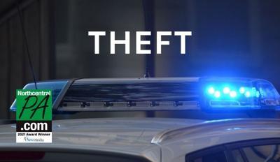 Theft_generic_NCPA_2021.jpg
