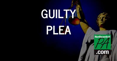 guilty plea 2020.jpg