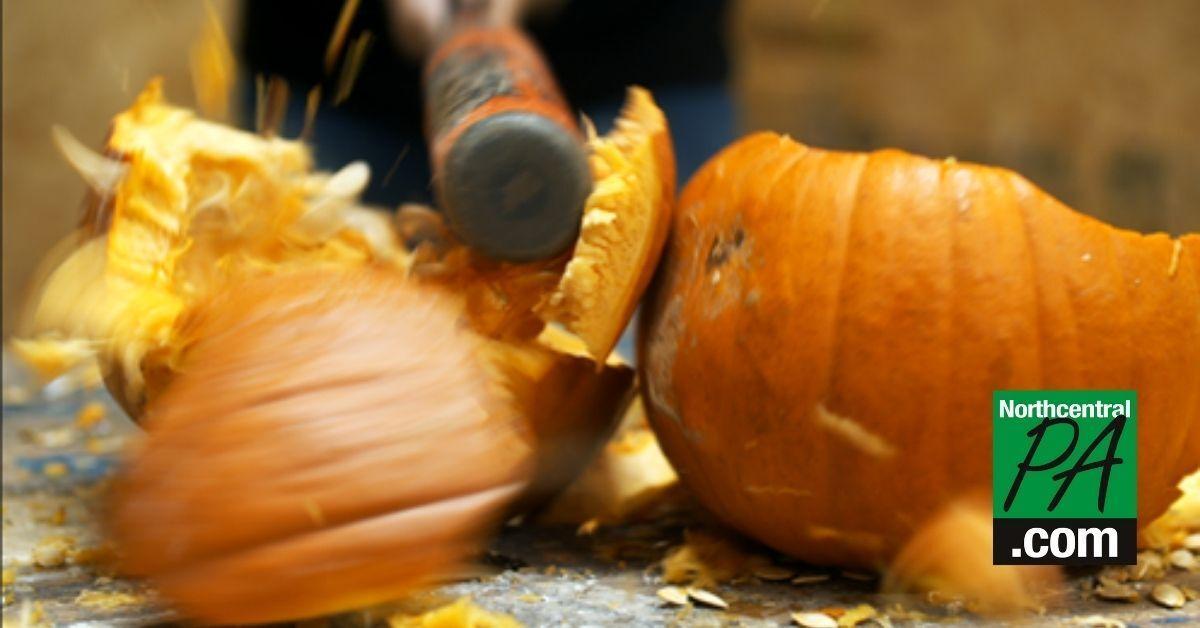 Pumpkin_NCPA.jpg