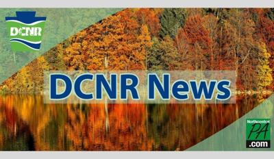 DCNR cover new size autumn.jpg