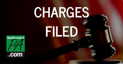 CHARGES FILED 2020.jpg