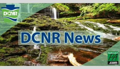 DCNR cover photo new size.jpg