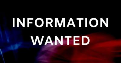 information wanted graphic _ 2019