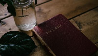 rustic bible.jpg