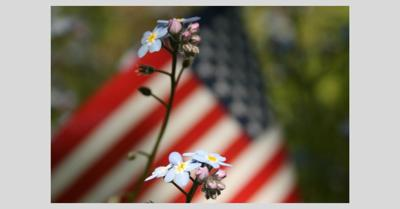 US flag with forget me nots.jpg